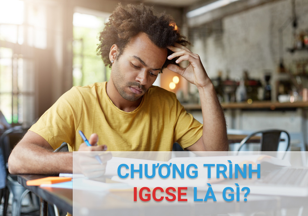 What is the IGCSE program?